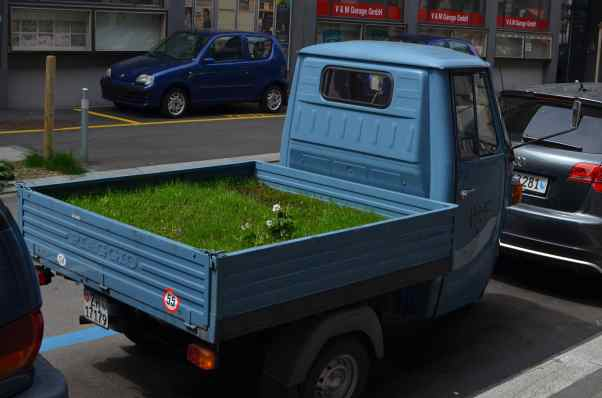 autoauto